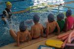 Swimming Lessons with Aquatots