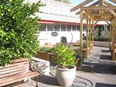 Environment Courtyard
